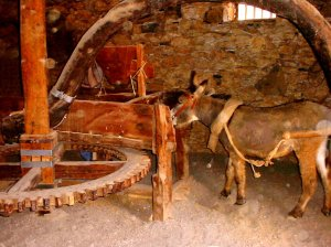 Horse_mill_045493