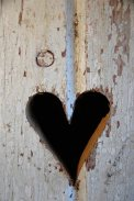 heart-in-wood